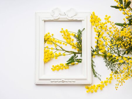 Yellow mimosa flowers in beautiful picture frame on white background. Traditional symbol gift for womans day on March, 8. Holiday concept