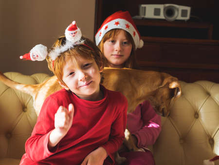 Little blonde caucasian kids in santa claus caps playing with their adorable puppy on the couch at home. Winter holidays christmas new year mood 스톡 콘텐츠