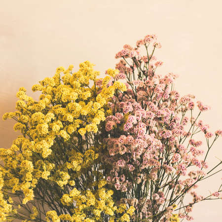 Dried pink and yellow flowers in white vase against white wall. Home interior autumn decor. Square