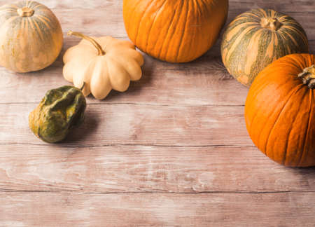 Autumn thanksgiving halloween background with different pumpkins and fall fruit on rustic wooden table