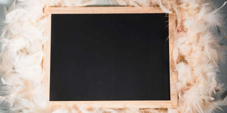 Trendy yellow feather frame and blackboard on turquoise background