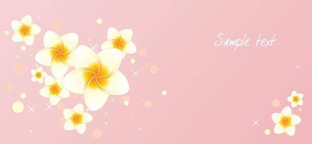 Pink background with frangipani flowers photo