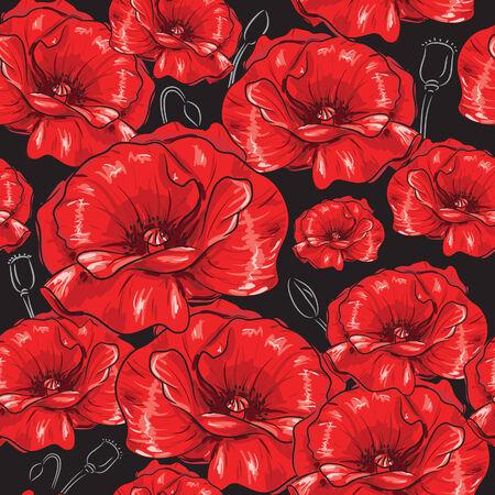 poppy field: Red Poppies Illustration