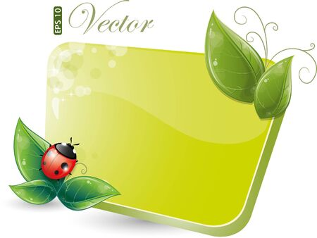 Green form with leaves and ladybug, eps-10 Stock Vector - 9280895