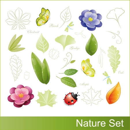 Set of nature elements, vector illustration, eps-10 Stock Vector - 9363833
