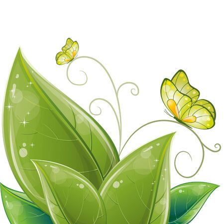 Green leaves design with butterfly, vector illustration, eps-10 Stock Vector - 9362465