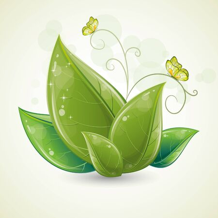 Green leaves design with butterfly, vector illustration, eps-10