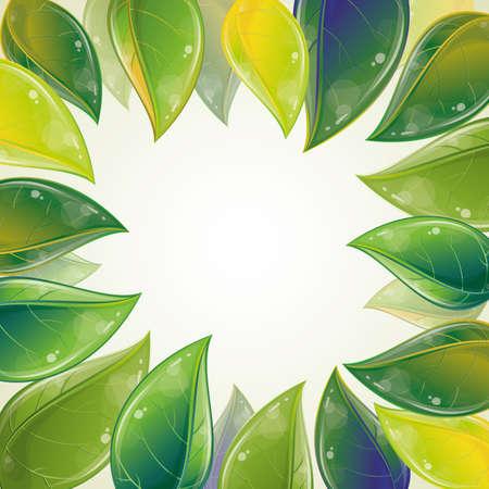 Spring leaves frame, vector illustration, eps-10 Stock Vector - 9362477