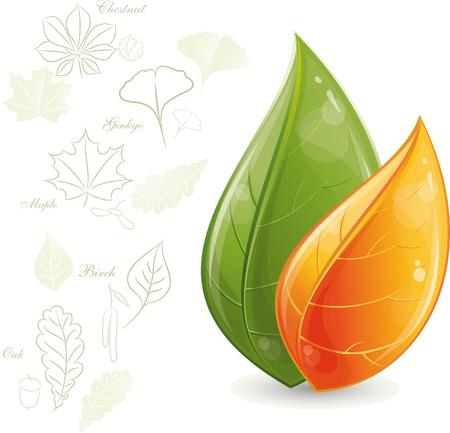 silueta hoja: Verdes hojas de dise�o, ilustraci�n, eps-10 de vectores