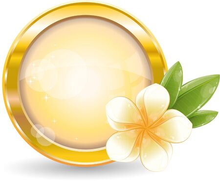 Gold circle frame with white frangipani flower, vector illustration, eps-10