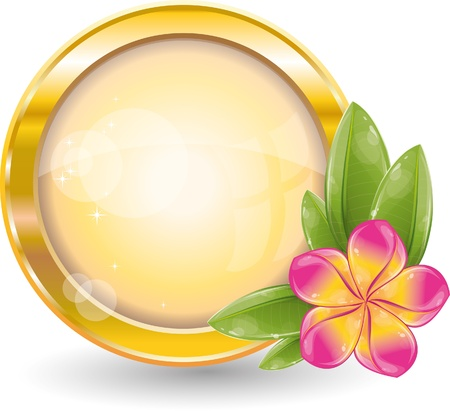 Gold circle frame with pink frangipani flower, vector illustration, eps-10