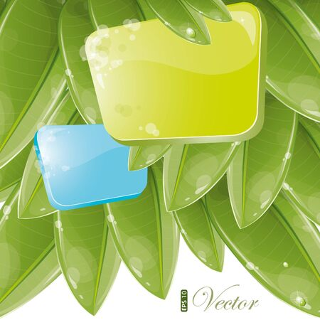 Blue and green form with foliage, vector illustration, eps-10 Vector
