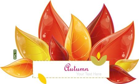 Autumnal leaves design Vector