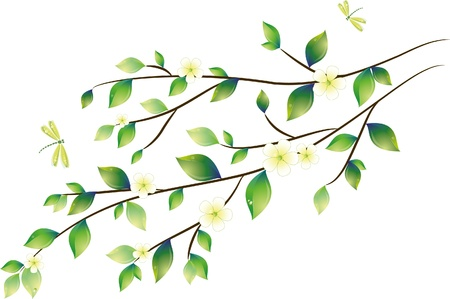 Green leaves with dragonfly, vector illustration, eps-10