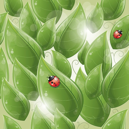Seamless pattern - Green leaves design with ladybug, vector illustration, eps-10 Vector