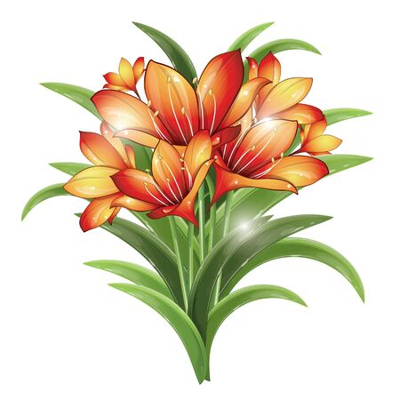 Bunch of orange lilies on a white background, vector illustration  Vector