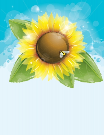 Beautiful sunflower and green leaves against blue sky Vector Illustration