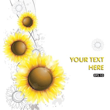 sunflower seeds: Abstract sunflower design
