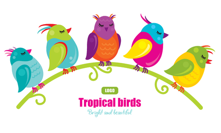 Five tropical birds sitting on a branch