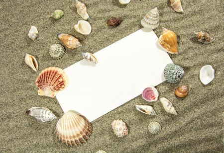 retained: tarjeta postal en la arena retenida por conchas