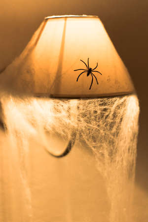 spider on a lamp a halloween night