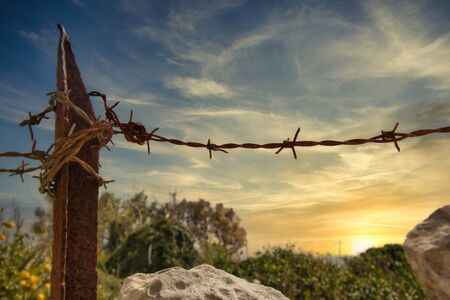 Barbed wire and rusty metal fence post in a field Archivio Fotografico