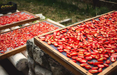 Sundried tomatoes drying in the sun in the Mediterranean