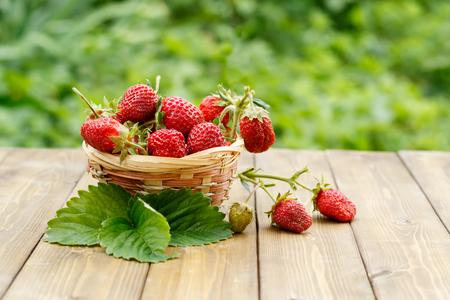 Closeup Erdbeere im Weidenkorb auf einem Hintergrund von Laub