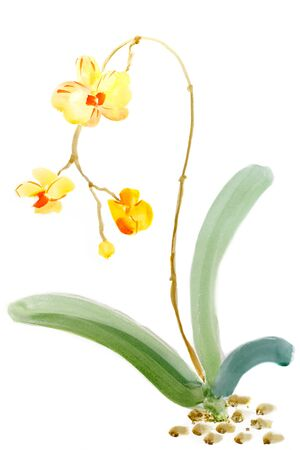 Painting watercolor on paper. Sketch Blooming yellow orchid.