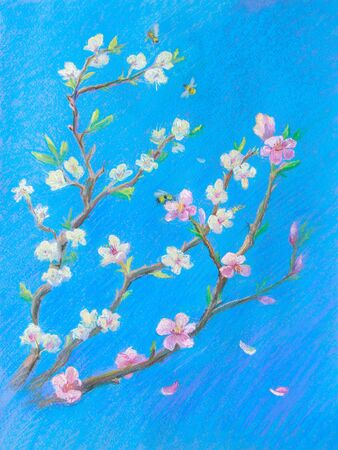 Painting pastel on paper. Blooming branches against the blue sky. Spring Decoration for interior. Imagens