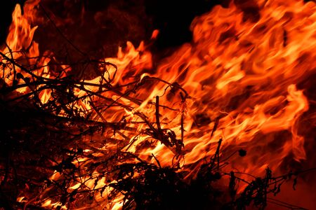 red  hot blazing fire on black background (the concept of risk of forest fires) Imagens