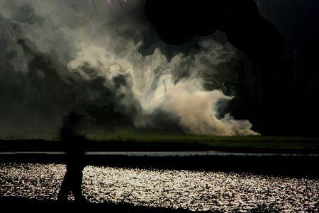 Ordinal: Wild Rauch. Lizenzfreie Bilder