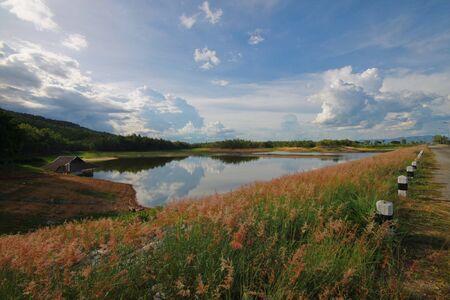 chiangmai: Pond near SuThep mountain Chiangmai Thailand Stock Photo