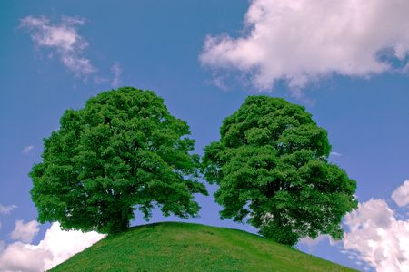 Hill with two trees Stock Photo - 3564614