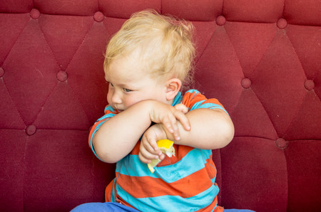 little boy, the first time in his life eats a lemon Stock Photo