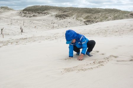 at the beach during very windy day.