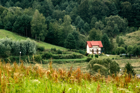 A small cottage with red roof between greenery 스톡 콘텐츠