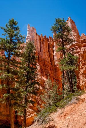 Bryce Canyon, Utah photo