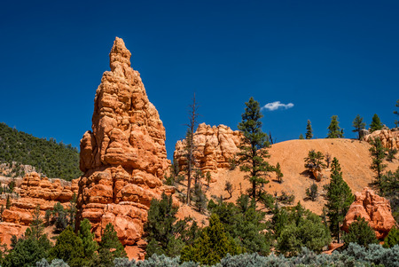 Bryce Canyon, Utah photo