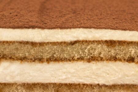 torte: Macro image of tiramisu cake with cocoa powder