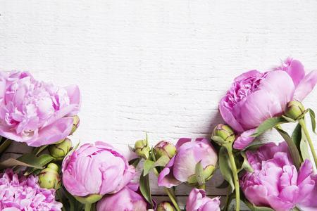 Peonie rosa su sfondo bianco di legno Archivio Fotografico - 40689567