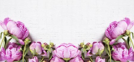 Pink peonies on a white wooden background Standard-Bild