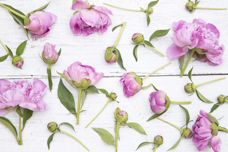 spring fashion: Pink peonies on white wooden background