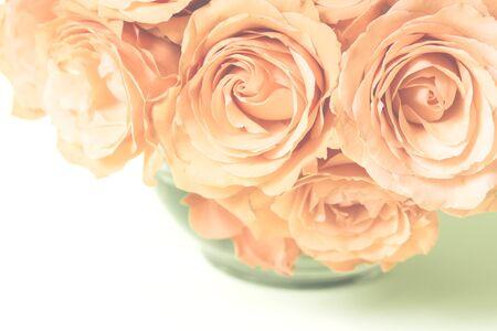 rosas naranjas: Rosas de color naranja en el estilo vintage