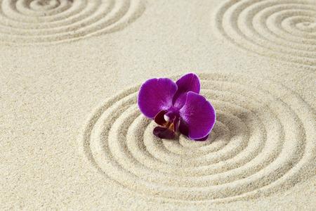 Purple orchid on sand pettern