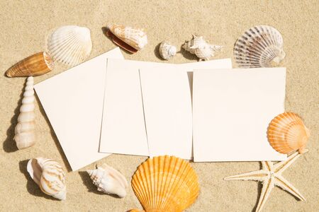 Blank vintage images with seashels on sand background