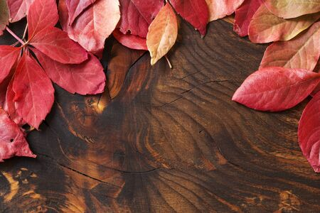 Red dry autumn leaves on grunge wooden background