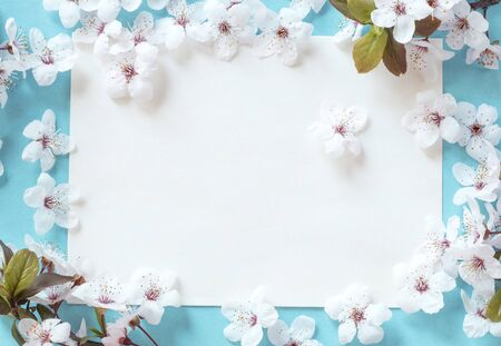 Blank message with a spring blossom