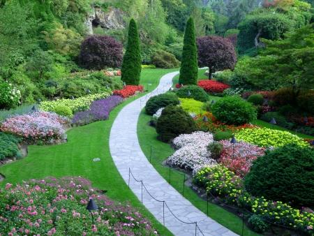 jardines con flores: Hermoso Jard�n Foto de archivo