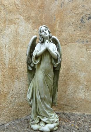 Praying angel 版權商用圖片